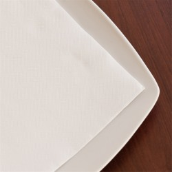 Serviettes Ecolabel Tissue 33x33 cm (x1200)