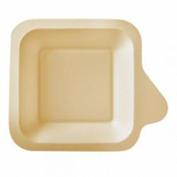 Assiette Canne à sucre avec languette (x1000)  - Taille : 11 x 11 x 1,7 cm