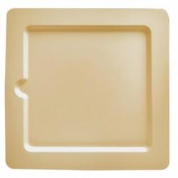 Assiette canne à sucre Carrée (x1000) - Taille : 20 x 20 x 1 cm