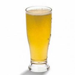 Verre à bière base épaisse (x72)