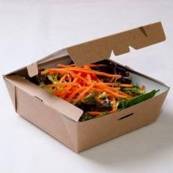 Boîte salade Carrée Feel Green (x 300)
