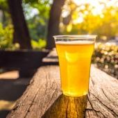 Saviez-vous que nos gobelets à bière sont biodégradables ? 🌱 L'alternative qui aide la planète 🌍  . . . #emballage #gobeletbiodegradable #gobeletabiere #gobelet #foodbazar